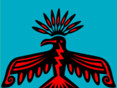 IPLCC THUNDERBIRDS LOGO